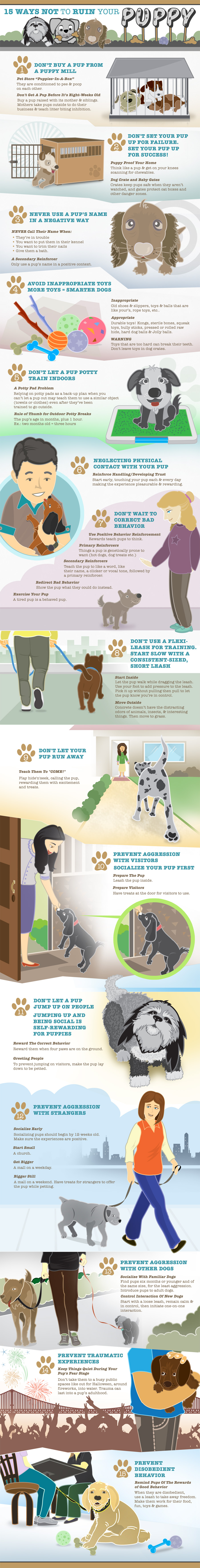 Puppy Training Graphic.jpg