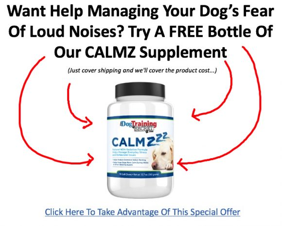 The Best Dog Noise Anxiety Treatments