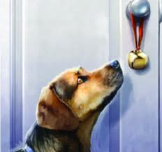 Teaching Your Dog Or Puppy To Ring A Bell For More
