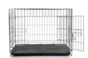 get the right size crate for your dog