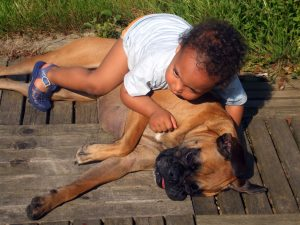 dogs and kids can grow up together