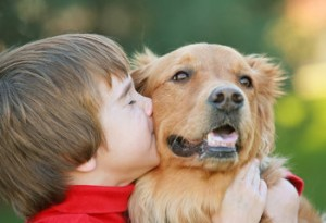 10 Genius Ways To Get Rid of Your Dog's Terrible Breath, puppy training, golden retriever training