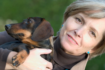 The Top Ten Best Dogs for Urban Dwellers