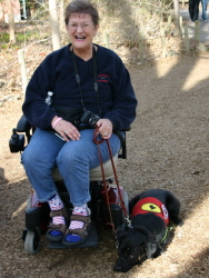 Even Service Dogs Have to Be Re-Taught in All Different Environments