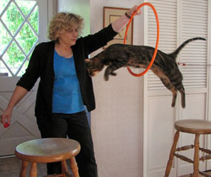 Doesn't Matter What Animal You are Training if you Use Your Mind! Thanks Clicker Training.com for the Photo