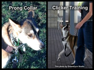 This says it all!  Thanks the cross over trainer for the photo