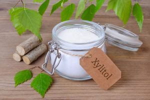 xylitol is very dangerous for dogs