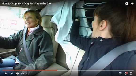 dog barking, how to stop dog barking, dog barking in car