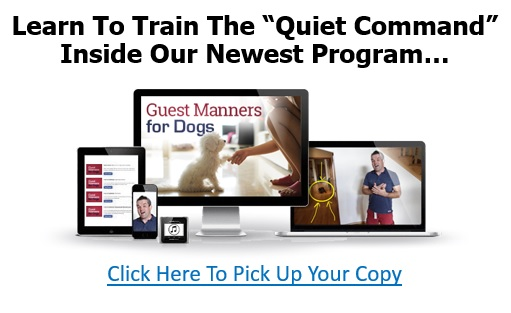 guest-manners-banner-004
