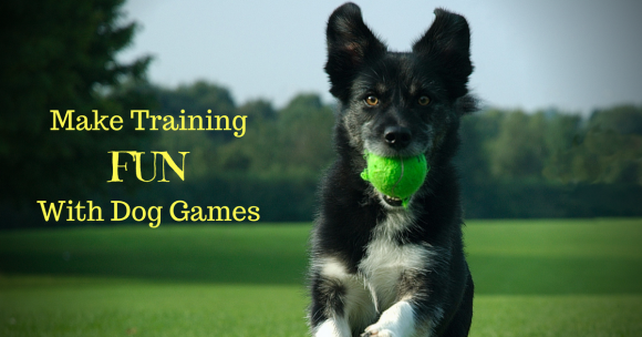 Make Training Fun With Dog Games