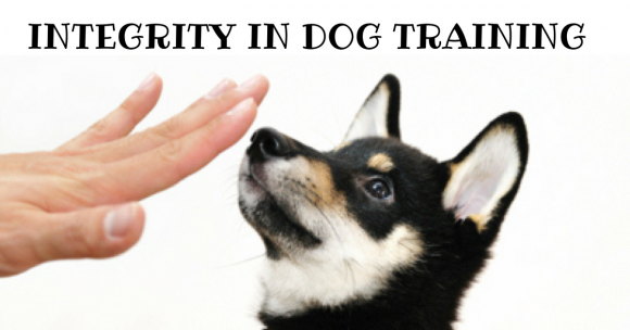 Integrity in Dog Training