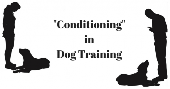 """Conditioning"" in Dog Training"