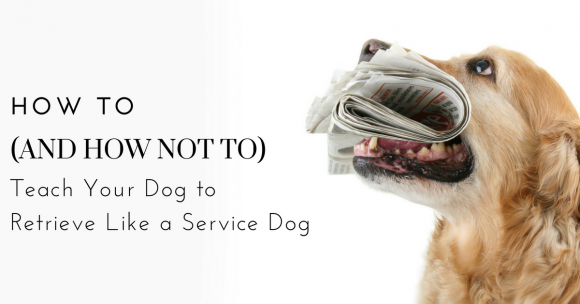 How To (and How NOT TO) Teach Your Dog to Retrieve Like a Service Dog