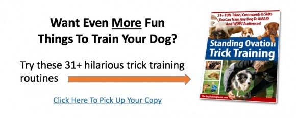 trick training banner ad 2