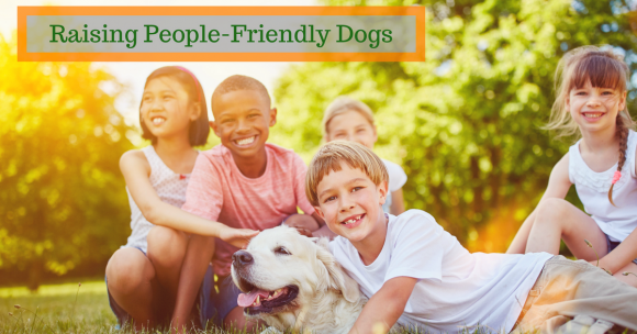 Raising People-Friendly Dogs