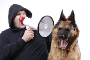 don't yell at your dog
