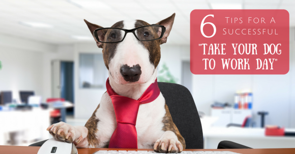 Take Your Dog To Work Day, dog training