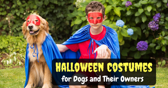Halloween Costumes for Dogs and Their Owners