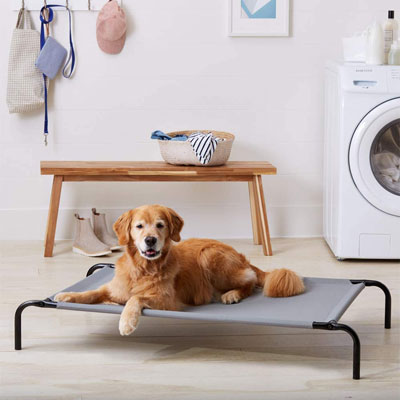 elevated dog bed for summer cooling and joint pain relief