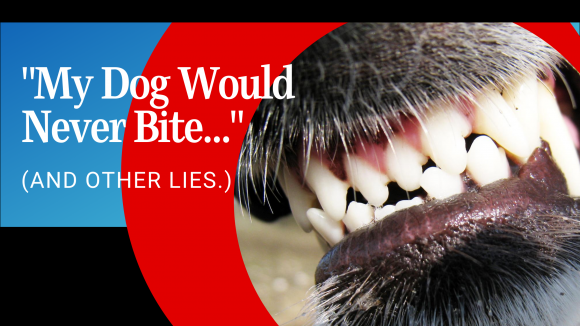 My Dog Would Never Bite… And Other Lies.
